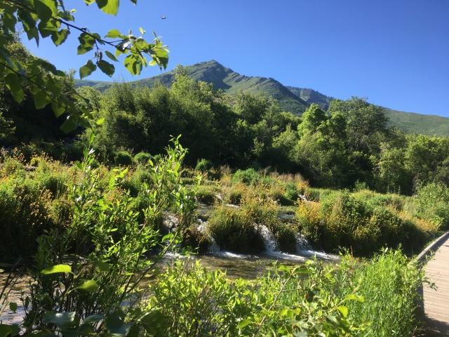 Cascade Springs 1