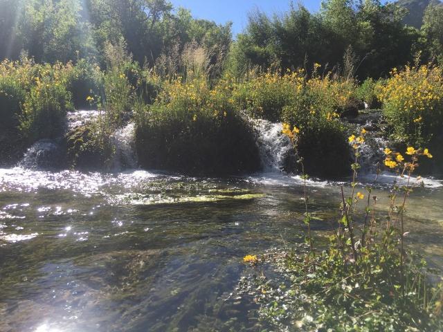 Cascade Springs 2